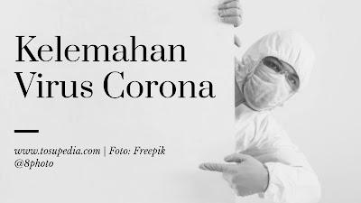 Ilmuwan Rusia Mengklaim Telah Menemukan Kelemahan Virus Corona