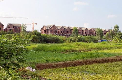 Sử nghiêm việc sử dụng đất nông nghiệp trái với quy định