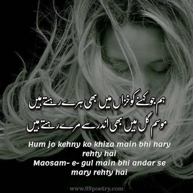 Hum Jo Kahny Ko Khiza Main Bhi Hary Rehty Hain-nattitude status in Urdu