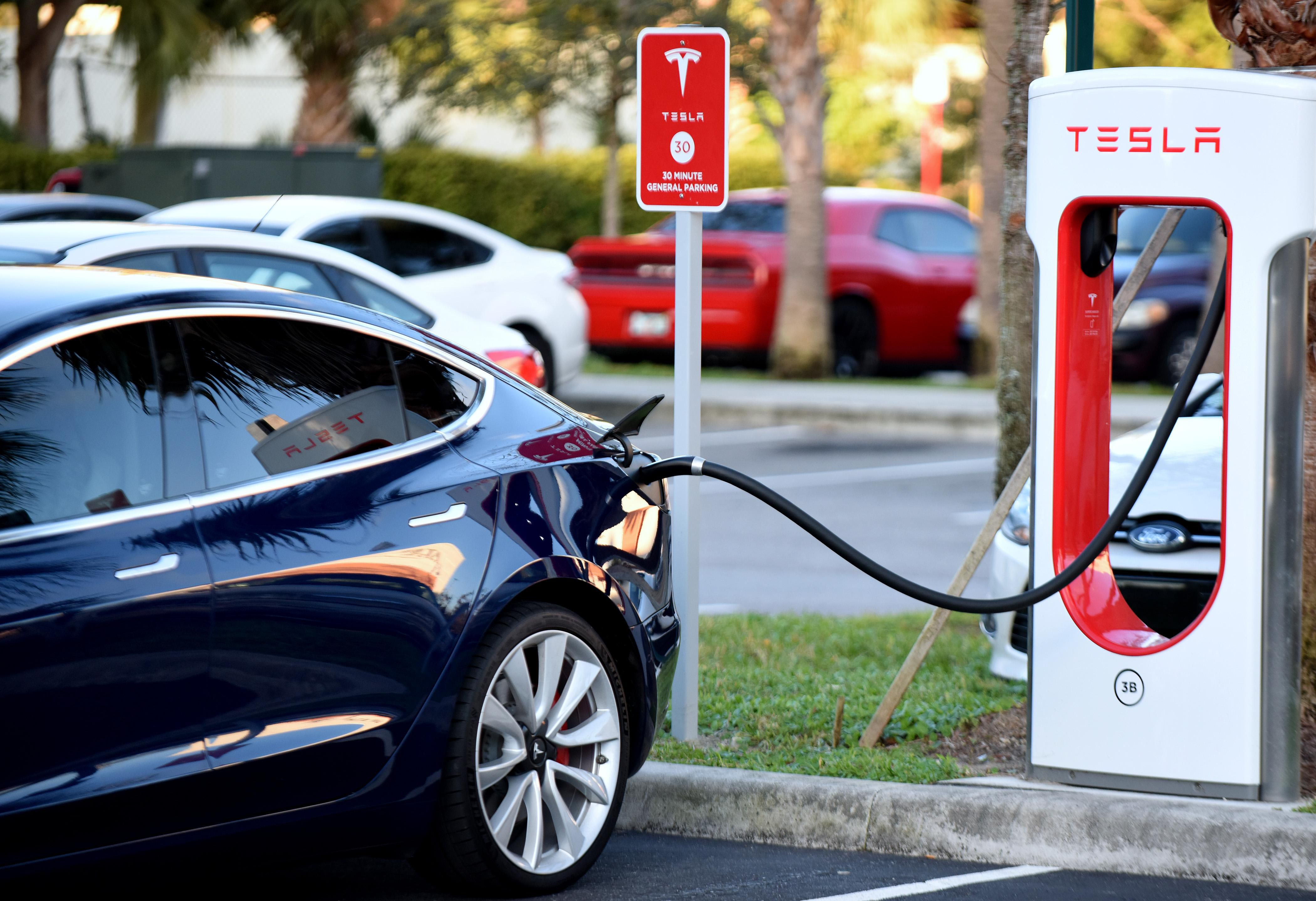 Everyone Wants To Be The Next Tesla