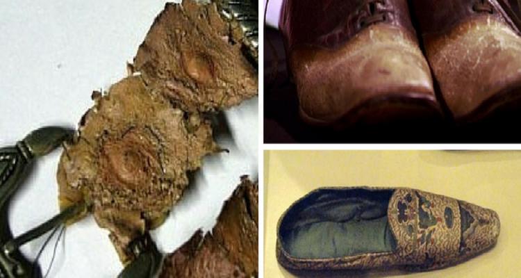 كارثة بمعنى الكلمة .. انتشار حقائب وأحذية تم تصنيعها من جلود البشر