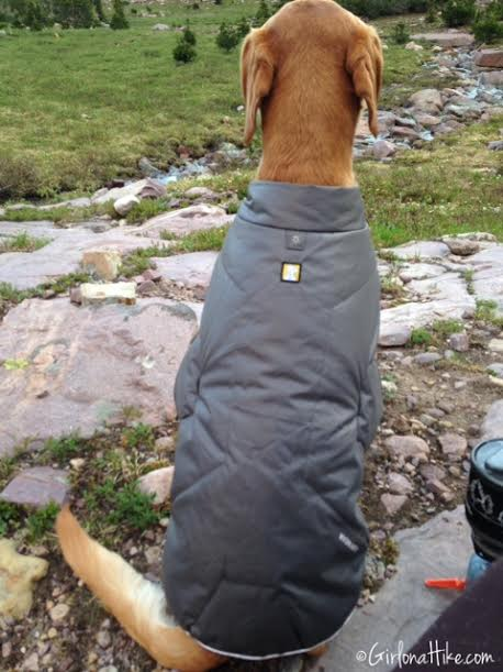 The Ruffwear Quinzee Insulated Dog Jacket Gear Review