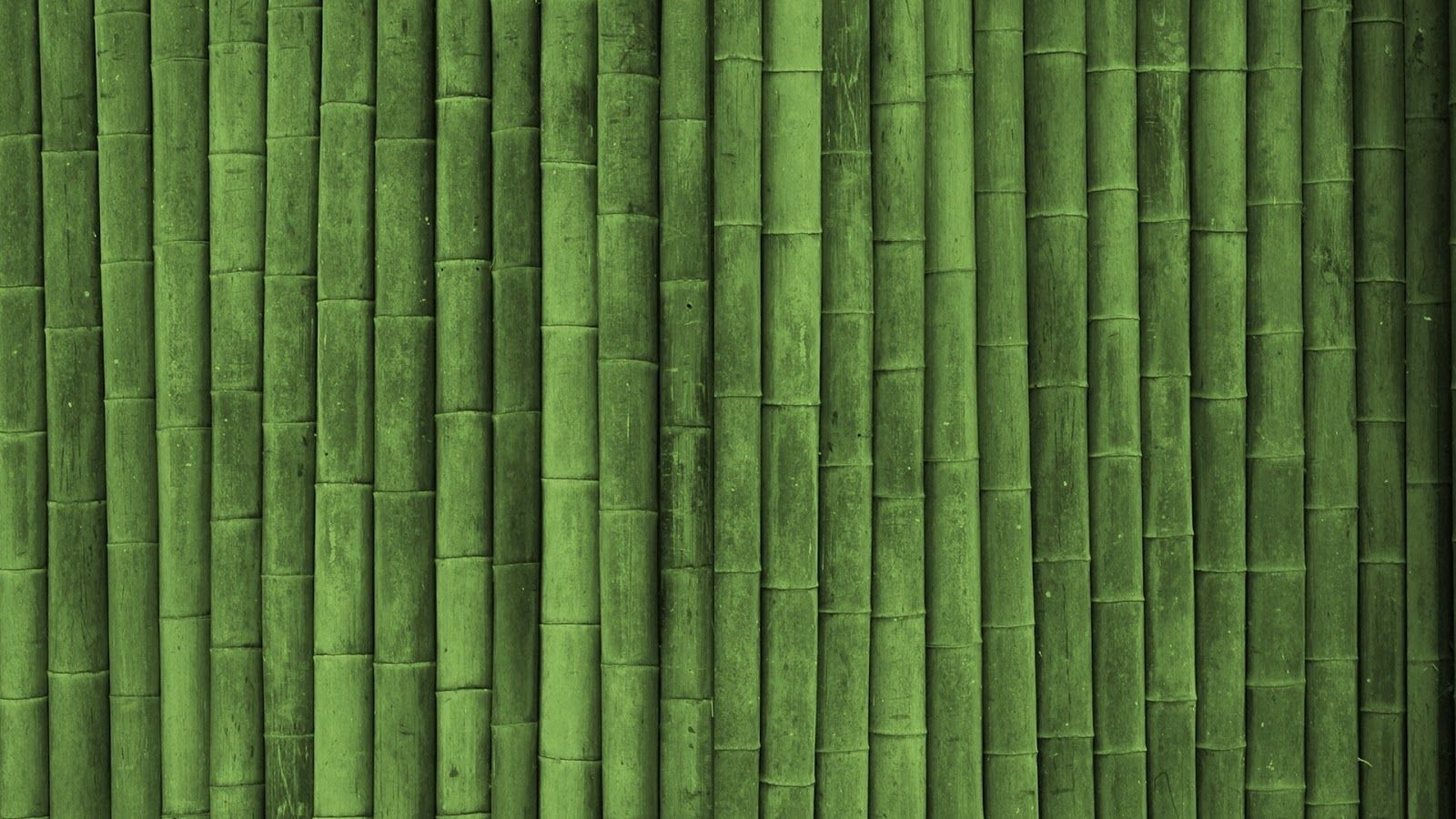 Green-bamboo-pattern-design-texture-template-HD-download.jpg