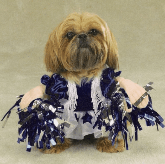 National Puppy Day Costumes Dresses