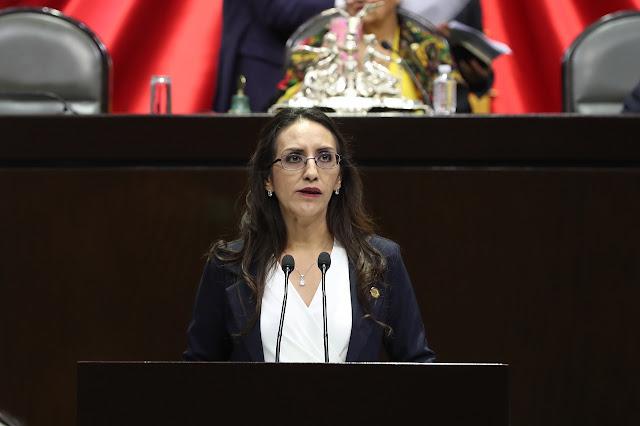 Proponen diputadas de Morena reformas para combatir violencia de género en el marco de la pandemia