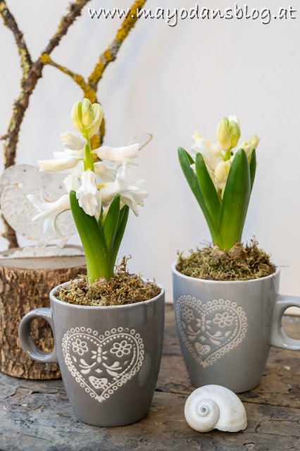Frühlingsblumen in Tasse