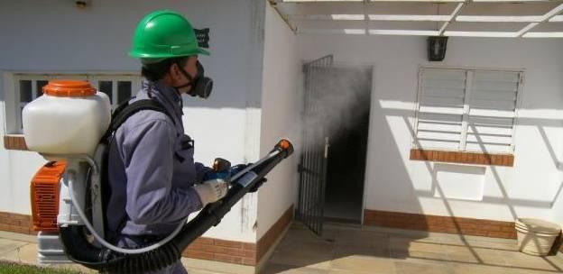 fumigación plagas Castellón