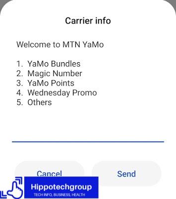 How do I register my MTN Magic Number?