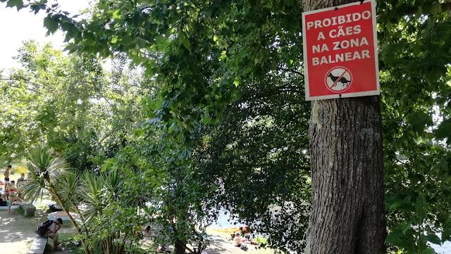 Placa Proibição de cães na zona balnear