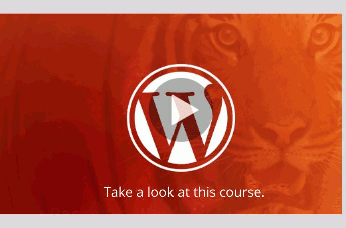 Become a WordPress Developer: Unlocking Power With Code - wordpress course udemy
