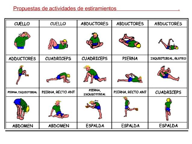 cuales son los tipos de ejercicio fisico