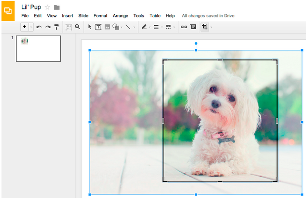Google Slides Now Allows You to Edit, Crop,and Add Borders