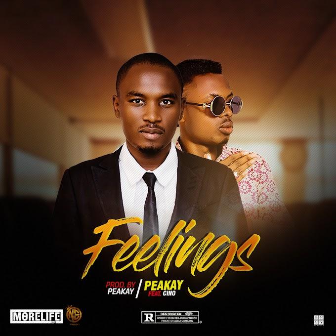 Peakay ft Cino -Feelings