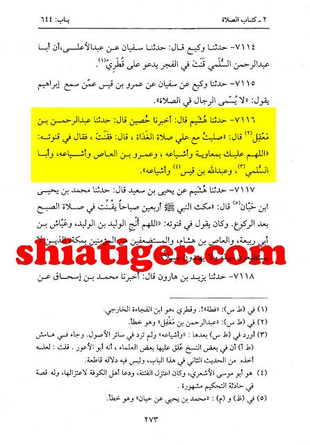 حضرت علی علیہ السلام کا معاویہ اور اس کے گروہ کے لئے قنوت میں بدعا کرنا