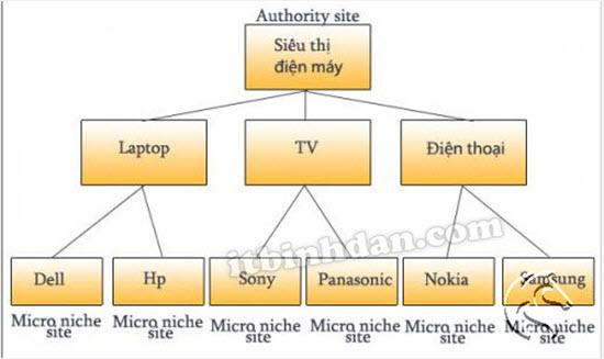 Authority-Site-là-gì