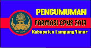 Pengumuman Formasi CPNS 2019 Kabupaten Lampung Timur