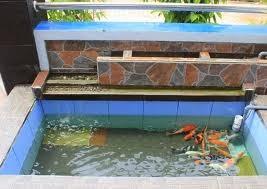 tukang kolam minimalis  kolam minimalis  tukang taman
