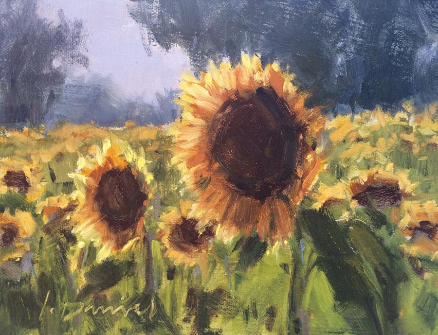 sunflower fields 2 by - photo #32