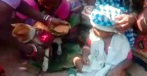 Baby boy married off to dog in India to ward off evil spirits