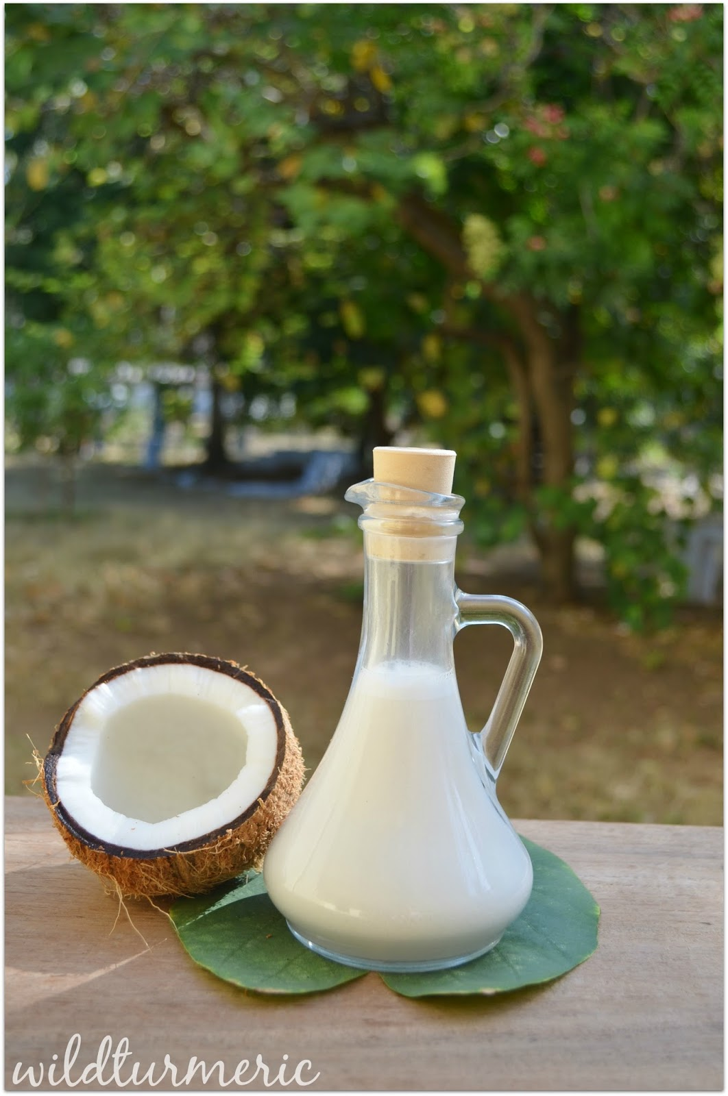 8 Top Nutritional Benefits Of Coconut Milk For Skin, Hair & Health