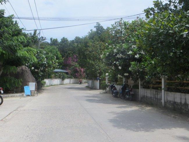 Дорога возле отеля