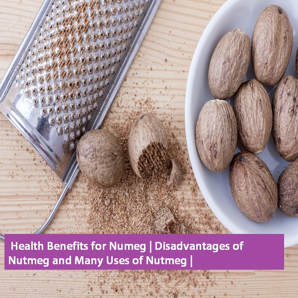 What are the benefits of nutmeg?  Which vitamin is in nutmeg?  What are the types of nutmeg?  What is the difference between betel nut and nutmeg?  benefits of nutmeg,