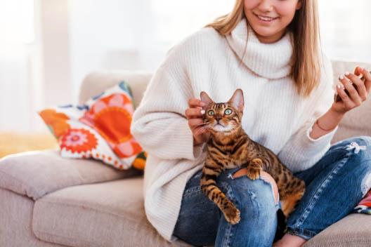 Jak koty rozpoznają ludzi?