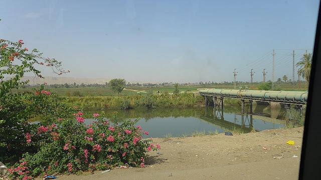 Blick aus dem Autofenster auf die Landschaft im ägyptischen Niltal