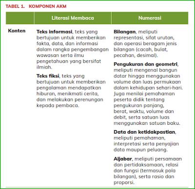 Asesmen Kompetensi Minimum (AKM)