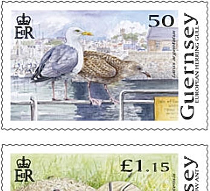 03517 Guernsey Postcard Boats at Sea