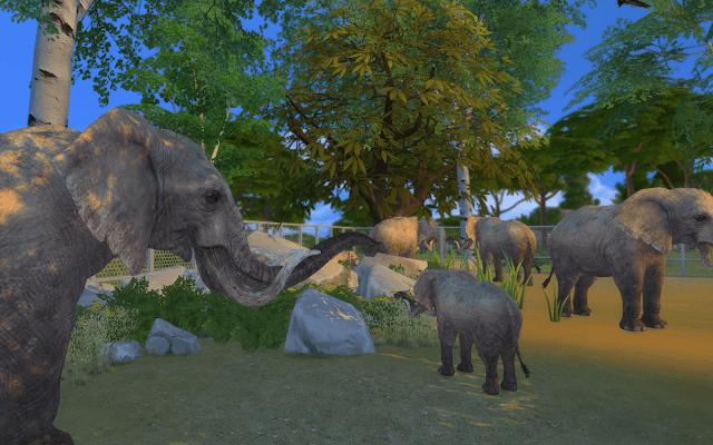 elephant sims 4 téléchargement