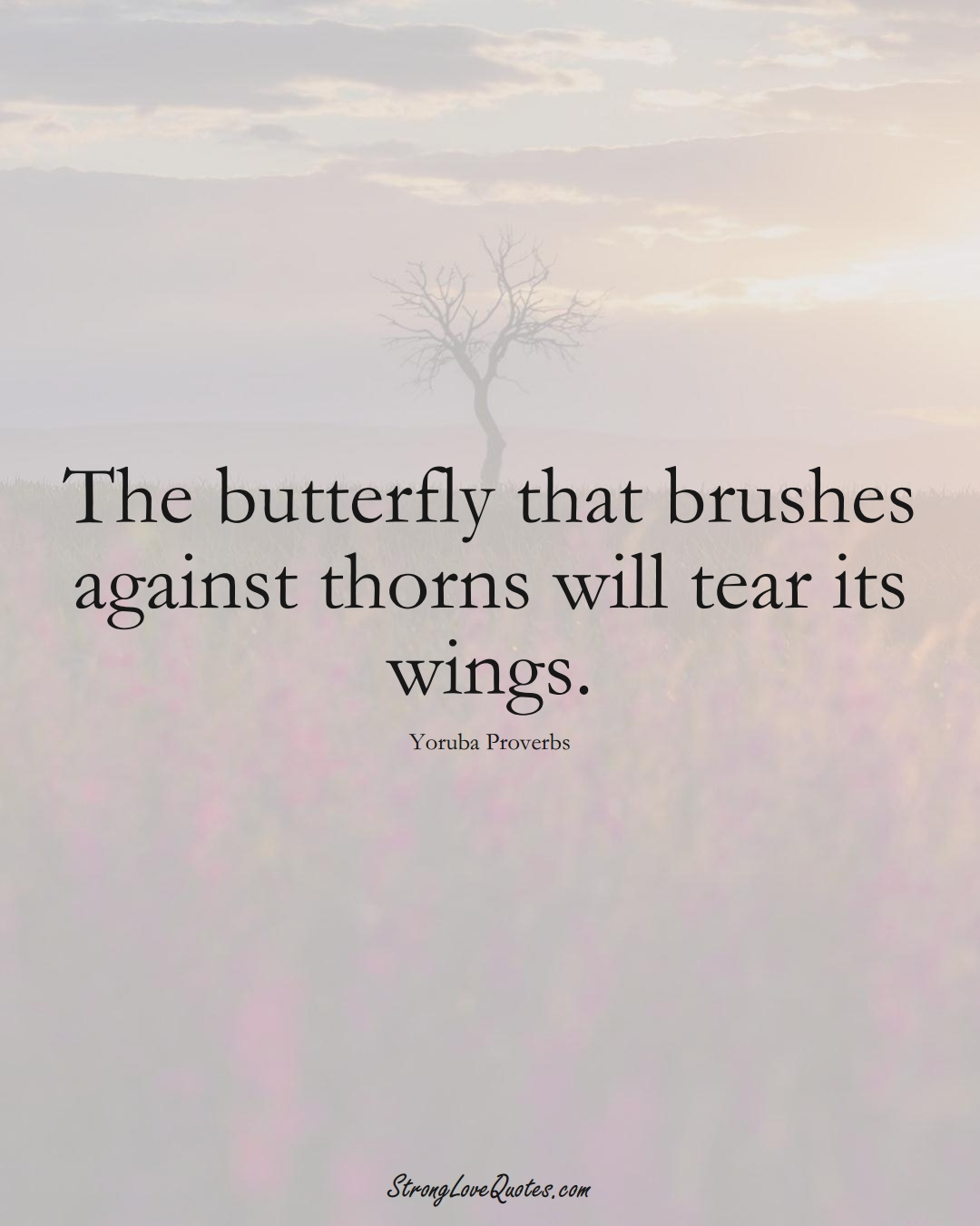 The butterfly that brushes against thorns will tear its wings. (Yoruba Sayings);  #aVarietyofCulturesSayings