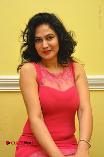 Telugu Actress Vijaya Murthy Stills in Red Short Dress at Www.Meena Bazaar Movie Opening  0064.JPG