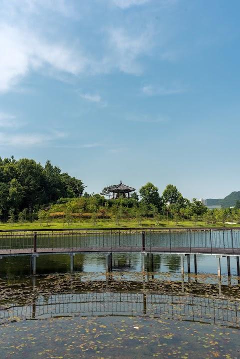 세종시 호수공원