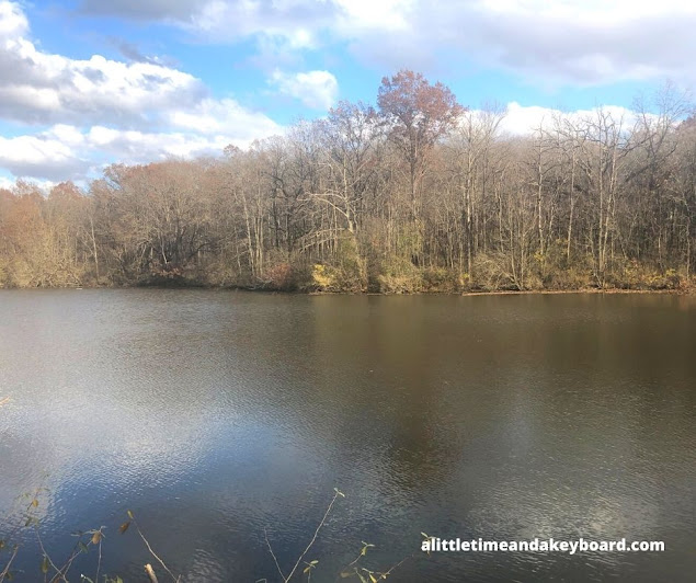 Sweeping view of a tranquil pond at Goodenow Grove Nature Preserve.