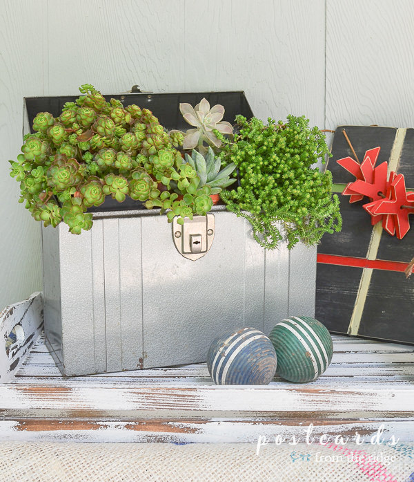 vintage metal toolbox repurposed as a planter for succulents