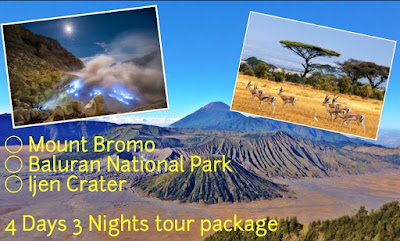 Mount Bromo, Baluran National Park, Ijen Crater Tour 4 days