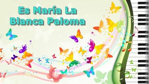 Es Maria La Blanca Paloma