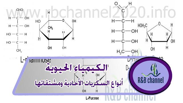 السكريات الأحادية ومشتقاتها - كيمياء حيوية