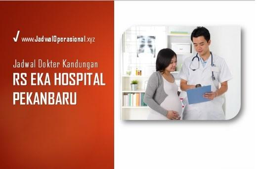 Jadwal Dokter Kandungan RS Eka Hospital Pekanbaru
