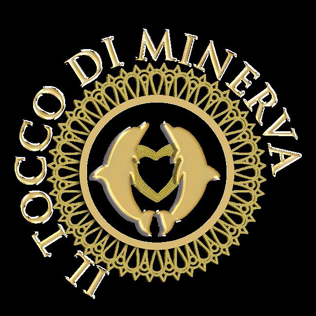 Progettazione di grafica Novara