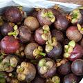 Khasiat Herbal Yang Fantastis, Pada Buah Manggis