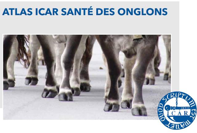 Atlas ICAR santé des onglons - WWW.VETBOOKSTORE.COM