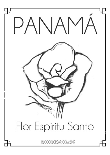 Colorear flor de Panamá