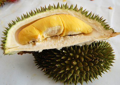 Some Durian for Health Benefits