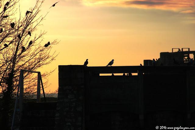 Fin de soirée sur les remparts de Provins