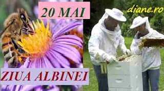 20 mai: Ziua albinei