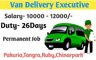 Van Delivery Executive