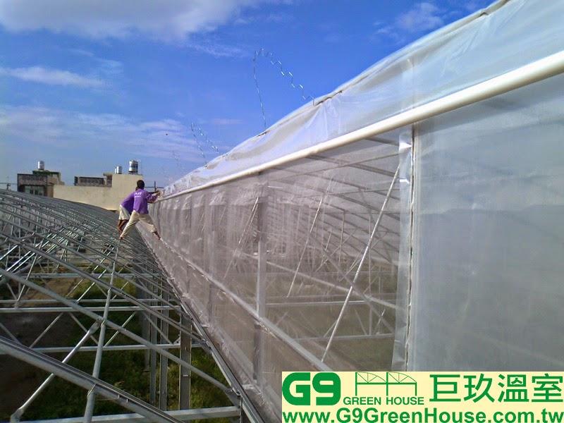 23.鋸齒型溫室結構通風口捲揚農膜固定完成外觀