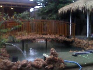 Tukang Kolam ikan Koi Murah, Jasa Buat Kolam ikan Hias Murah, Jasa Pembuat Kolam ikan Koi Murah,Jasa Pembuatan Kolam Batu Kali